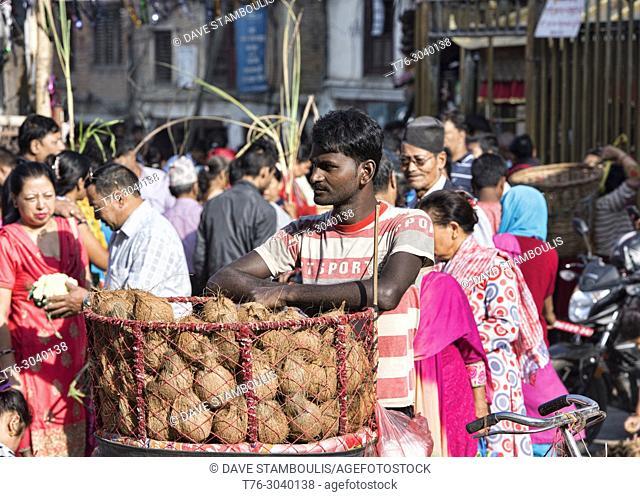Coconut vendor, Kathmandu, Nepal