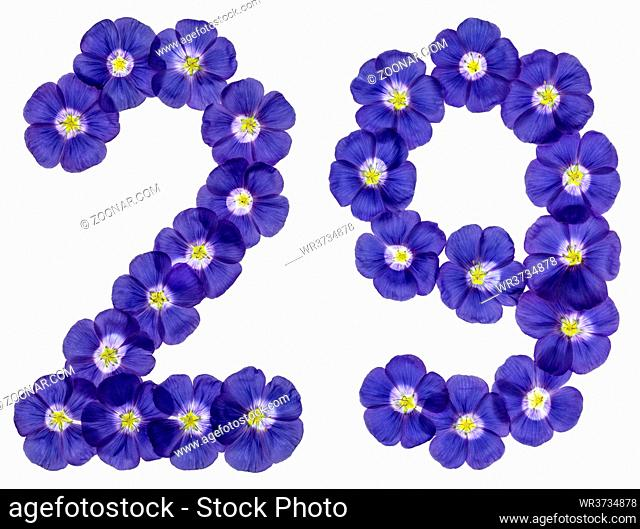 Arabic numeral 29, twenty nine, from blue flowers of flax, isolated on white background
