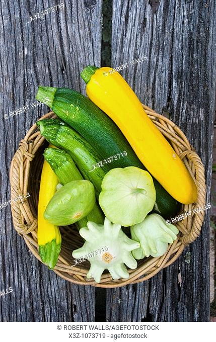 A variety of cucurbits and squash