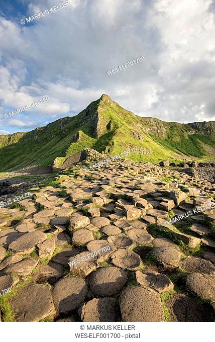 United Kingdom, Northern Ireland, County Antrim, View of causeway coast, Giant's Causeway