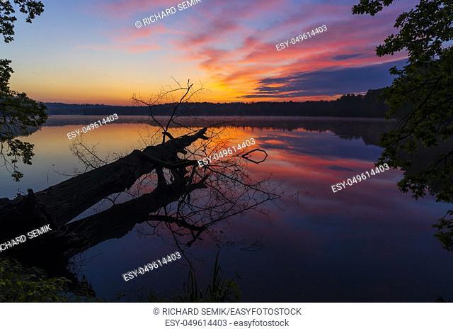 sunrise sun over pond, Trebon, Czech Republic