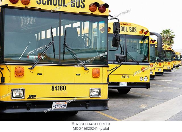 School Busses Parked in Parking Lot