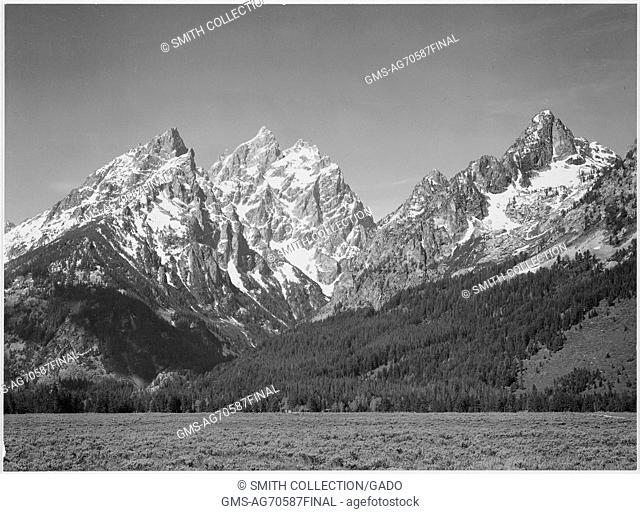 Grassy valley, tree covered mountain side and snow covered peaks, Grand 'Teton National Park', Wyoming. Ansel Adams Photographs of National Parks and Monuments