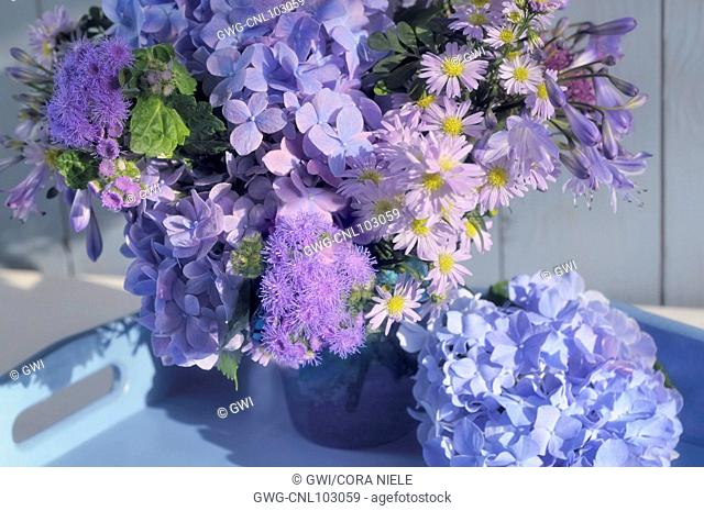 ASTER AND HYDRANGEA BOUQUET