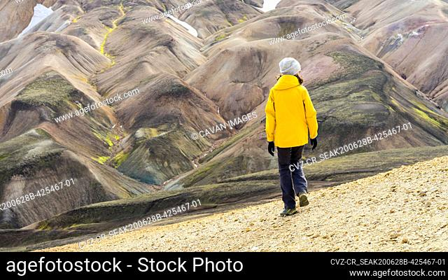 Young woman hiker walking around Iceland's highlands and mossy hills