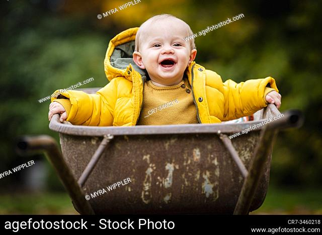 Baby boy portrait in autumn leaves and wheelbarrow