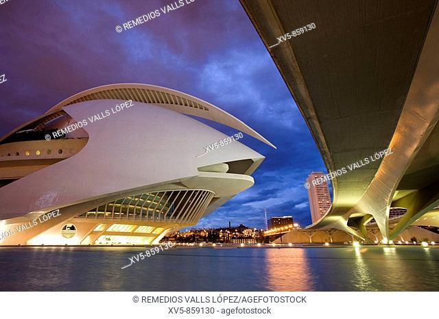 Spain. Comunidad Valenciana. Valencia. City of the Arts and the Science. Palau de les arts Reina Sofía, opera house and performing arts center