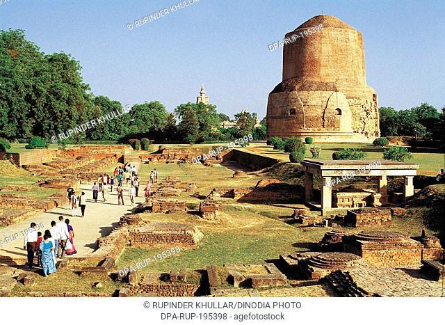 Dhamek stupa, sarnath, uttar pradesh, india, asia