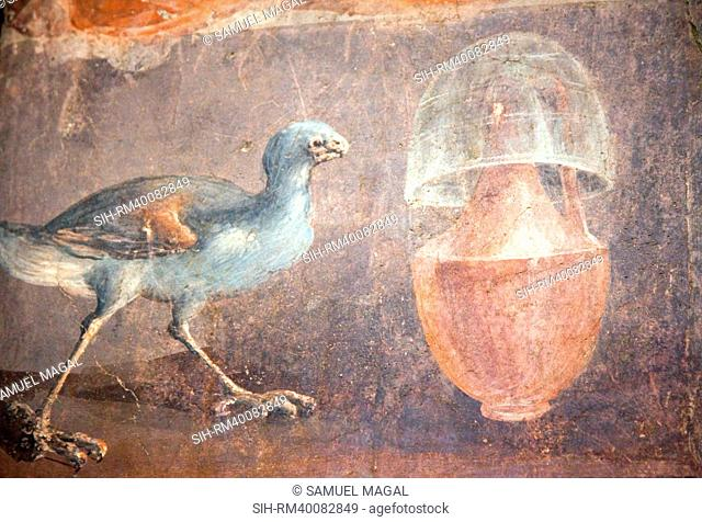 Italy, Naples, Naples National Archeological Museum, from Herculaneum, Still-life with Chicken