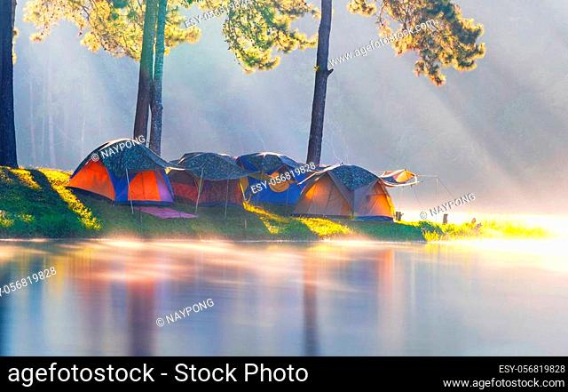 Adventures Camping tourism and tent under the pine forest with reflection on water in morning at Pang-ung, Mae Hong Son, Thailand