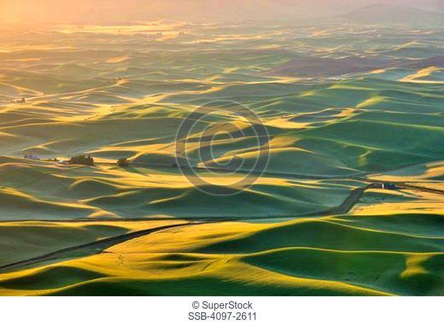 High angle view of rolling hills at sunrise, Palouse, Washington State, USA