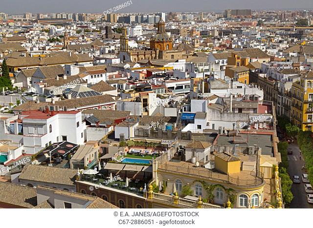 Spain, Andalusia, view of the city of Seville from Cathedral of Saint Mary of the See