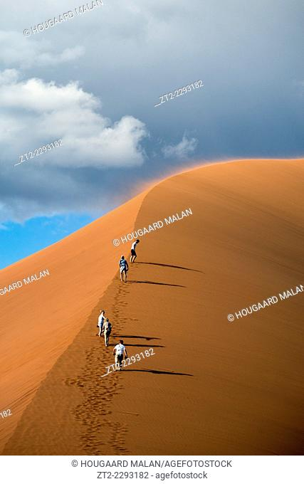 Telephoto image of four young tourists climbing up the spine of dune 45. Sossusvlei, Namib Naukluft National Park, Namibia