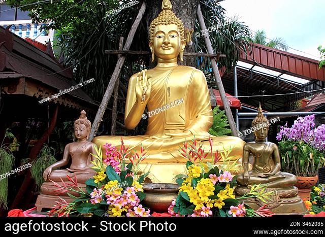 Golden Buddha under tree in Wat Takarong in Ayutthaya, Thailand