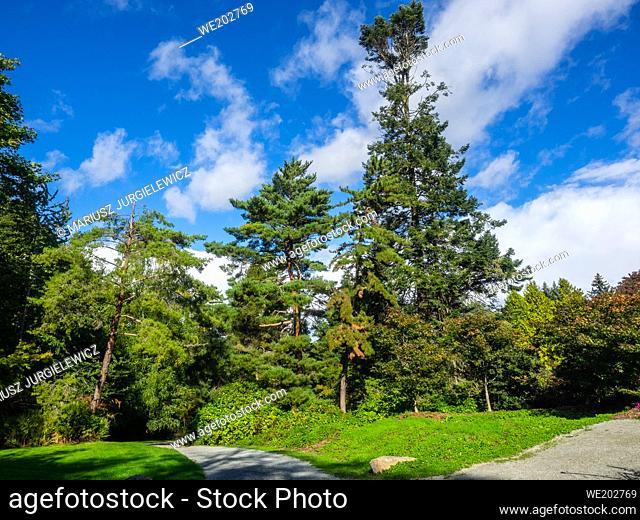 Kubota Garden is a 20-acre (81, 000 m²) Japanese garden in the Rainier Beach neighborhood of Seattle, Washington. Major features of the Kubota Garden include...