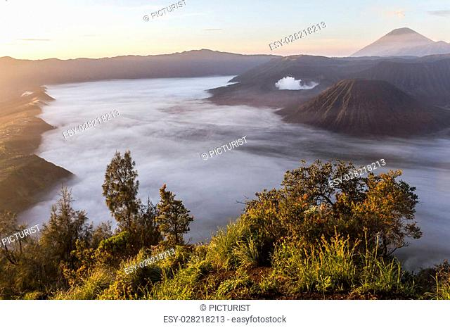 View on Mount Bromo landscape before sunrise, Java, Indonesia