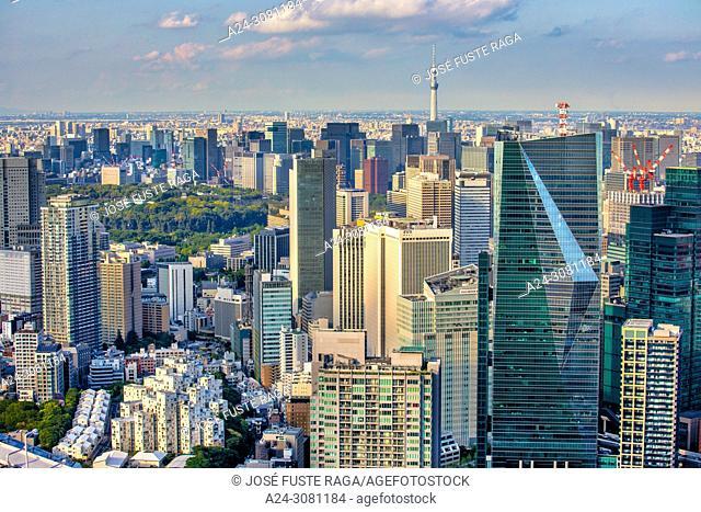 Japan, Tokyo City, Shimbashi and Marunouchi area, Imperial Palace gardens