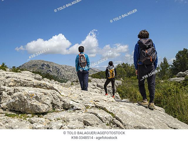 escursionistas en el Puig des Castellot, 694 m, Selva, Mallorca, Balearic Islands, Spain