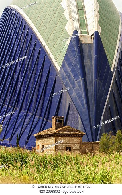 AGORA; CITY ARTS AND SCIENCES, VALENCIA, SPAIN