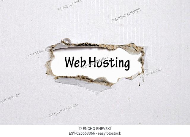 The word web hosting appearing behind torn paper