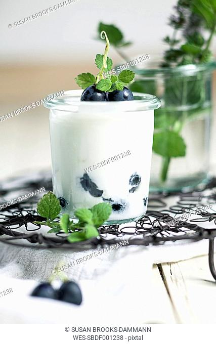 Yoghurt with blue grapes and mint