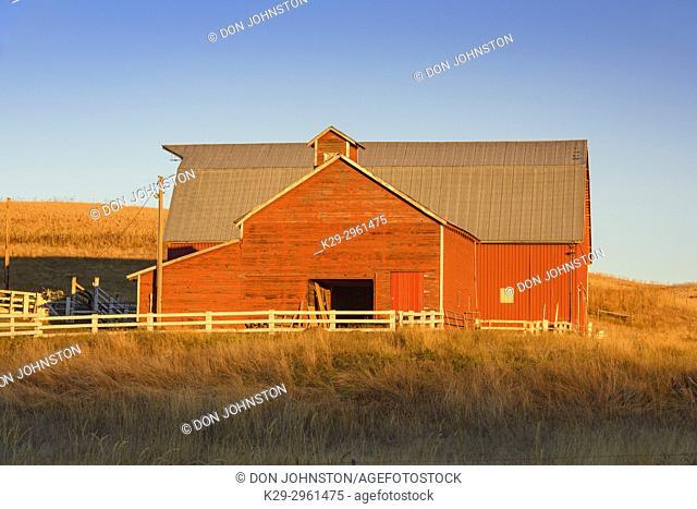 Farmland in late summer, Dry Creek Road near Colfax, Washington, USA