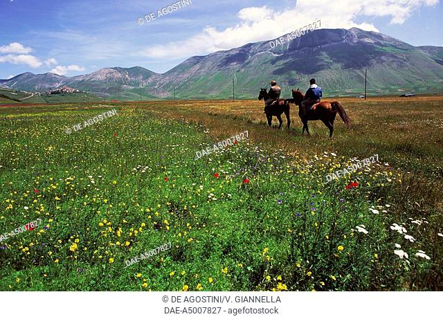 Tourists on horseback in Pian Grande, with Castelluccio di Norcia and Mount Vettore in the background, Sibillini Mountains national park, Umbria, Italy