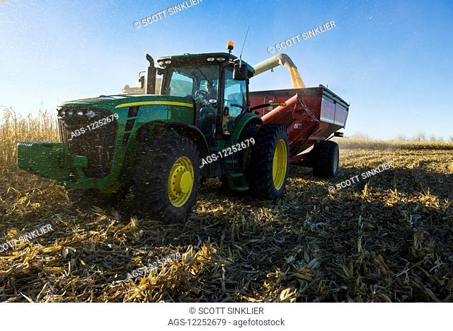 A farmer augers yellow grain corn from a combine into a grain wagon during corn harvest in Southern Iowa; Iowa, United States of America