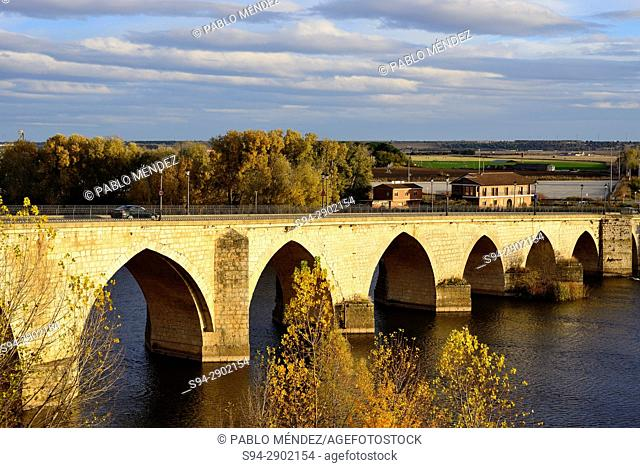 Bridge over Duero river in Tordesillas, Valladolid, Spain