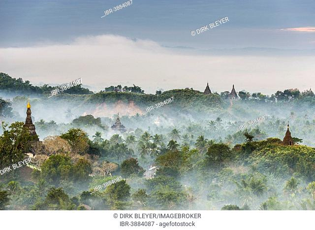 Pagodas and temples surrounded by trees, in the mist, Mrauk U, Sittwe District, Rakhine State, Myanmar