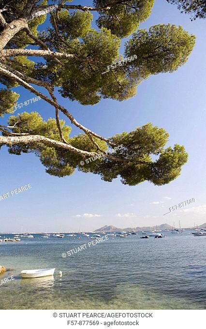 Puerto Pollensa, Mallorca, Spain