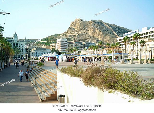 -Alicante City- Spain