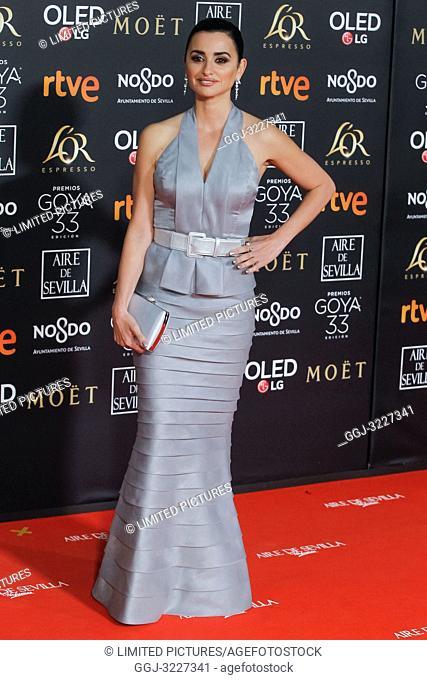 Penelope Cruz attends the Spanish Cinema awards Goya 33rd edition at FIBE attends 33rd Goya Cinema Awards 2019 at Palacio de Congresos y Exposiciones FIBES on...