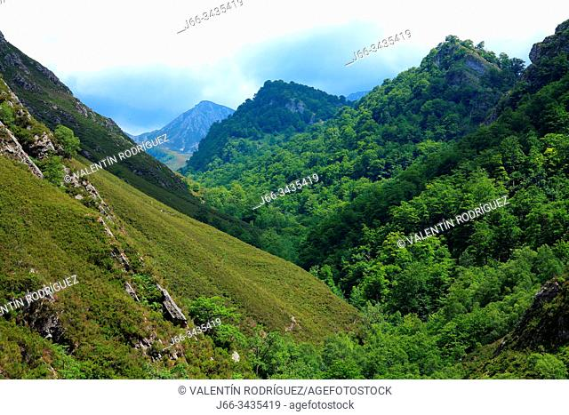 Landscape on the Los Arrudos route. Natural park Redes. Asturias