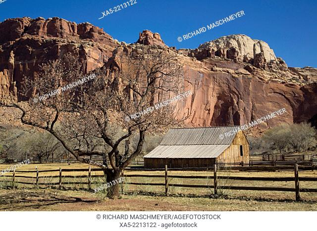 USA, Utah, Capitol Reef National Park, Historic Gifford Homestead Barn (1908)