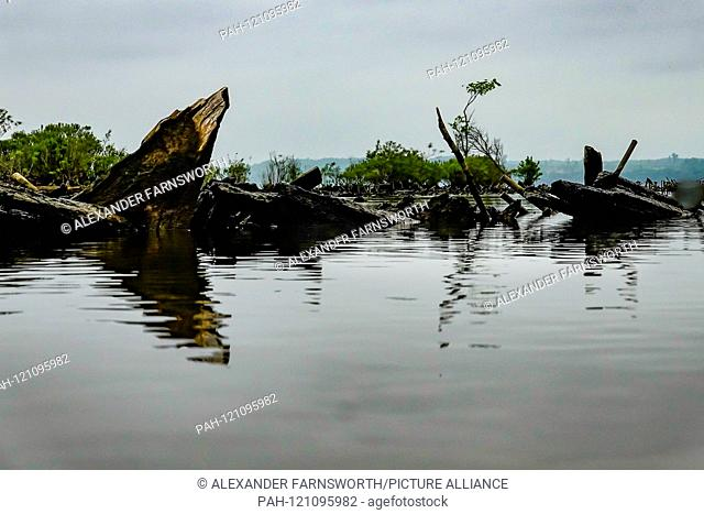 Mallows Bay, Maryland USA The ghost fleet of Mallows Bay, a collection of historic shipwrecks on the Potomac River. 2019 | usage worldwide