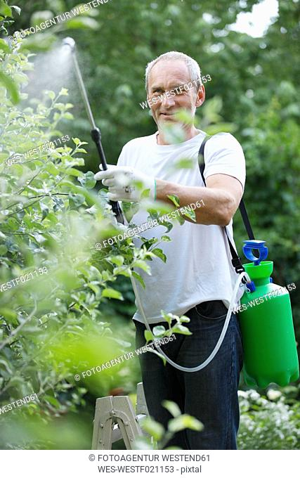 Man spraying plant protection products in the garden