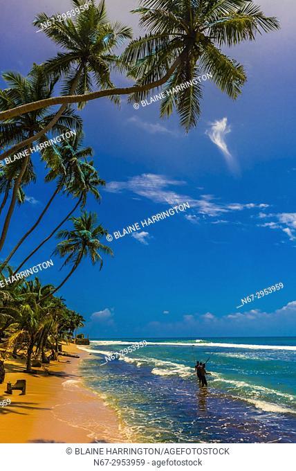 Fishing, Akurala Beach, south coast of Sri Lanka