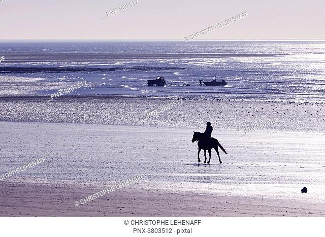 Normandy. Manche. Annoville sur Mer. Young woman riding on the beach at high tide during the Christmas period