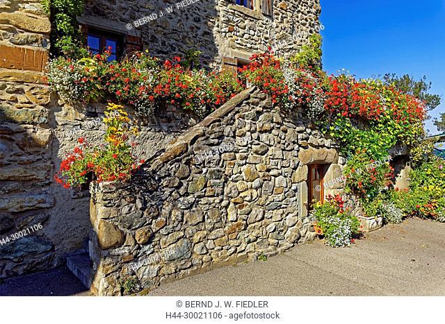 Häuser, alt, typisch, Blumen