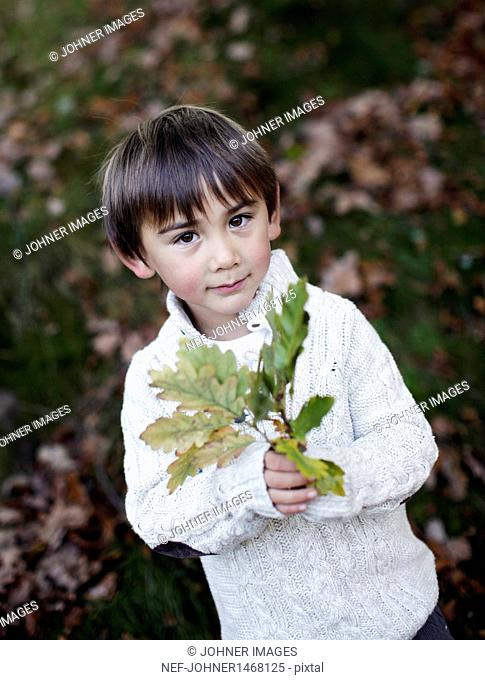 Portrait of boy holding twig