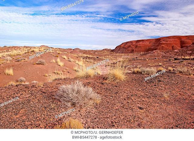 landscape of the Painted Desert, USA, Arizona, Petrified Forest National Park