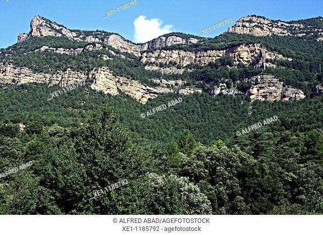 Busa mountains, Solsones, Catalonia, Spain