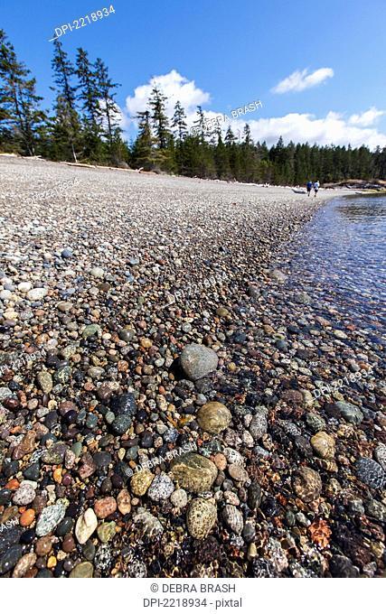 Two Men Walk On A Rocky Beach On The Sunshine Coast, British Columbia Canada