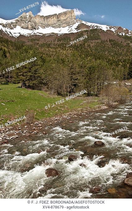 Bosques de la Selva de Oza, Hecho, Huesca