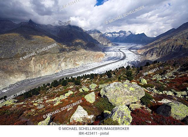 Aletsch Glacier, canton of Valais, Switzerland