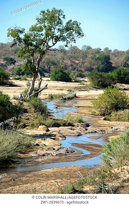 River scene, Kruger National Park, Transvaal, South Africa