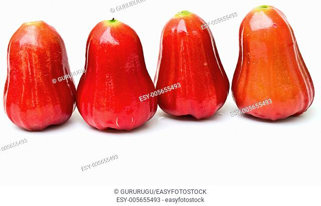Rose apples, Syzygium jambos