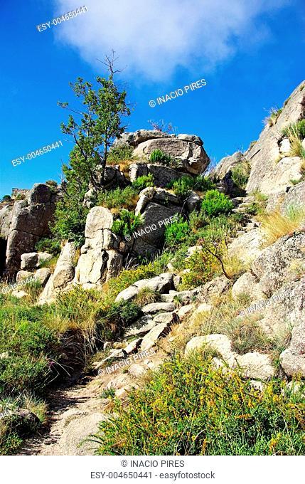 Landscape on National Park of Peneda Geres, Portugal