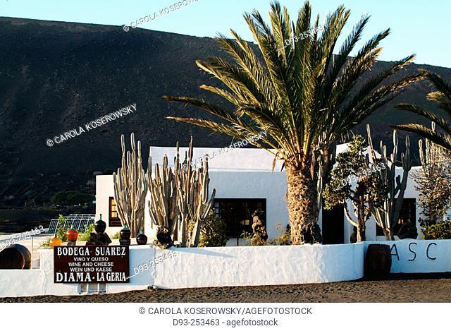 Winery at La Geria, Lanzarote. Canary Islands. Spain